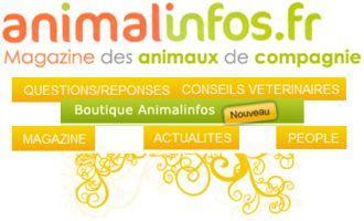 Le magazine gratuit des animaux de compagnie