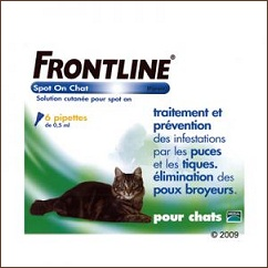 Antiparasitaire chat Frontline