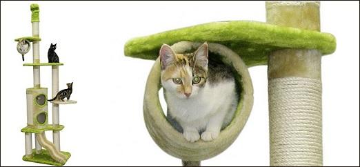 Arbre à chat Eliott