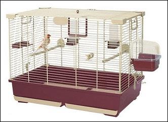Cage canari Marchioro