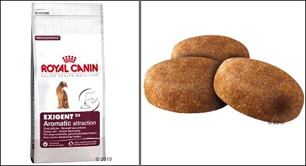 Croquettes Royal Canin